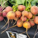 Beets from Kazy Farms